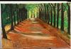 ALBERTO GARAZI - Orange forest