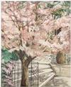 SUSAN SAHALL - FLOWERING TREE